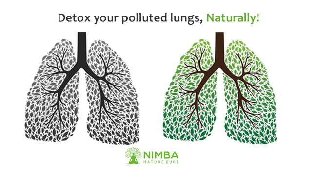 Detox your Polluted Lung Naturally