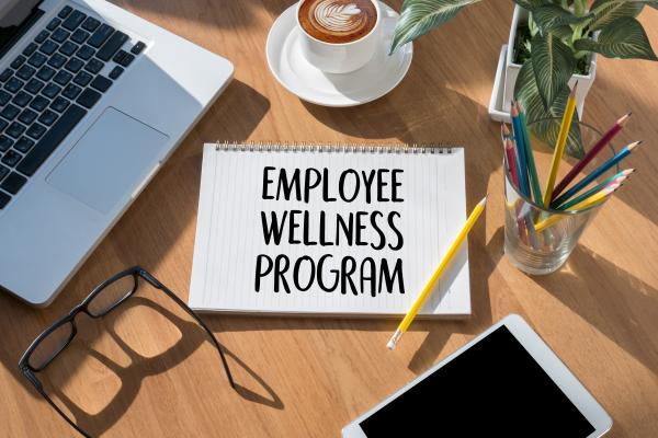 Corporate Wellness Program-nimba-nature-cure