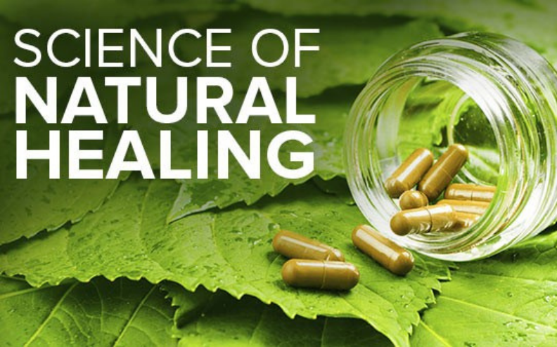Top Five Reasons Why You Should Visit a Naturopath
